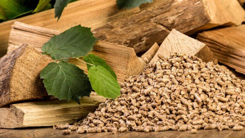 Les pellets sont-ils des combustibles écologiques?